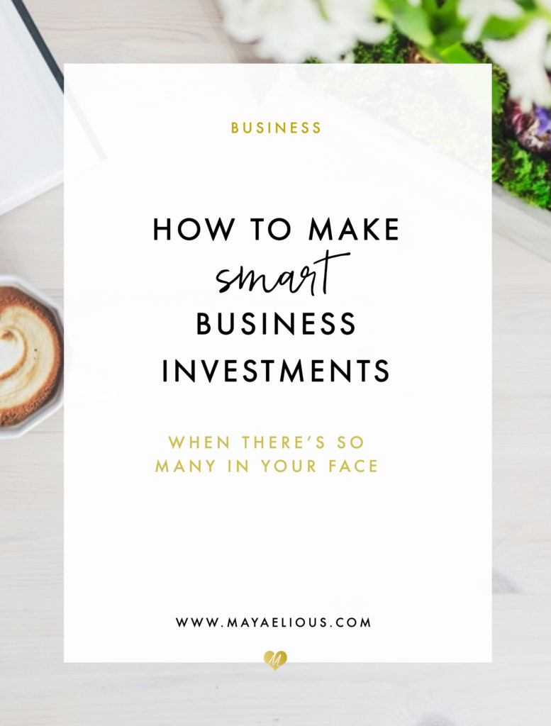 BusinessSmartBizInvestment